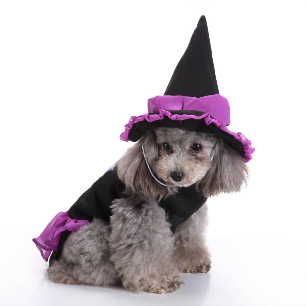 Puppy Pet Dog Halloween Witch Dress Hat Clothes Fancy Party Cosplay Costume UK 21