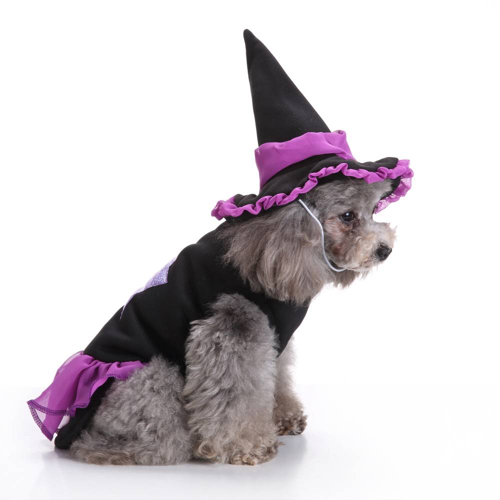 Puppy Pet Dog Halloween Witch Dress Hat Clothes Fancy Party Cosplay Costume UK 20
