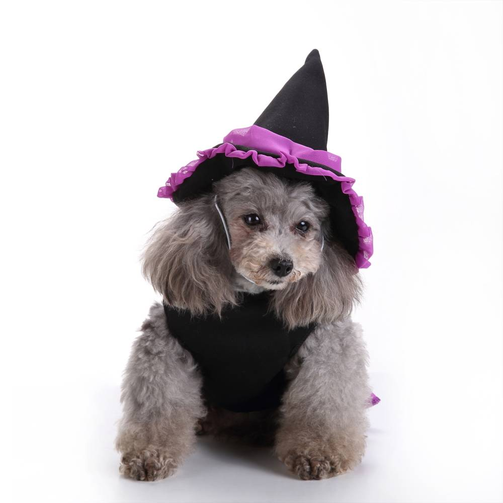 Puppy Pet Dog Halloween Witch Dress Hat Clothes Fancy Party Cosplay Costume UK 24